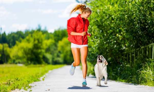 сколько раз бегать чтобы похудеть